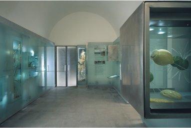 Museo del fiume di Nazzano